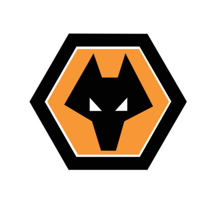 Wolves crush Everton to keep Champions League dreams alive